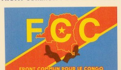 Affaire Sextape/Kongo-Central : le FCC veut s'enquérir de la situation…
