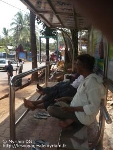 Les abris de bus très confortable