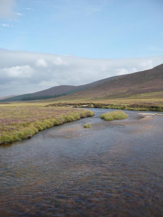 Loch Muick, le 30 aout 2008 (42)