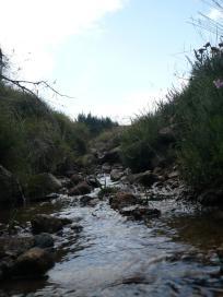 Loch Muick, le 30 aout 2008 (5)