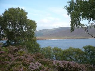 Loch Muick, le 30 aout 2008 (77)