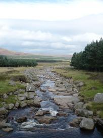 Loch Muick, le 30 aout 2008 (8)