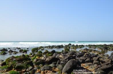 vu près de la mer
