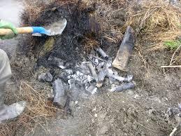 Connaissez vous le bio-charbon?