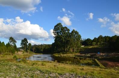 Vue sur les étangs