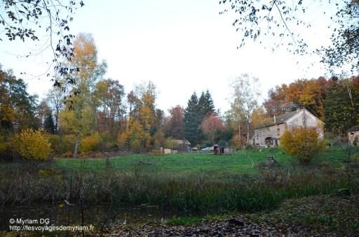 la maison et le terrain