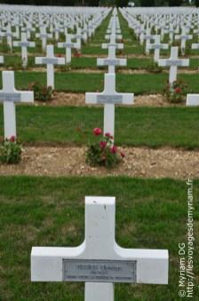 Chaque tombe a un rosier planté à ses pied