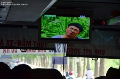 Cao Mai, Vietnam (58)
