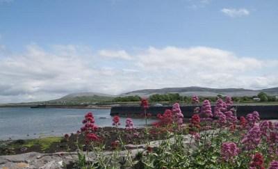 Ballyvaughan - Le Burren - Comté de Clare (Irlande)