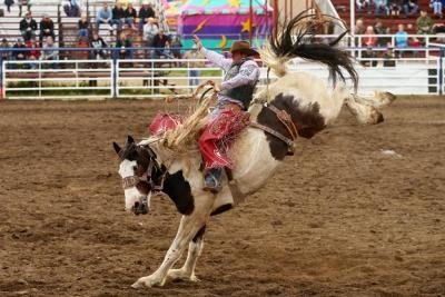 Le rodéo de Red Lodge - Montana (USA)