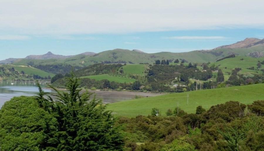 La baie d'Akaroa - NZ
