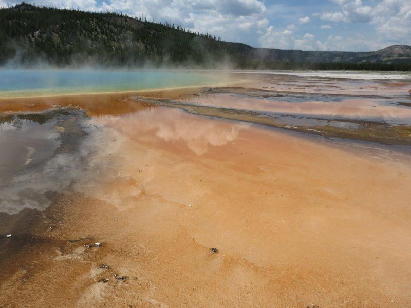 Parc de Yellowstone (USA)