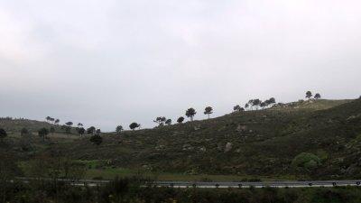 Sur la route vers Castelo Mendo