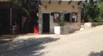 Accueil du camping Maslinom d'Orasac - Croatie