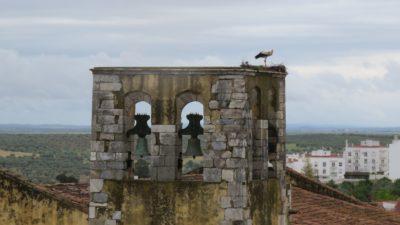 Le clocher et la cigogne