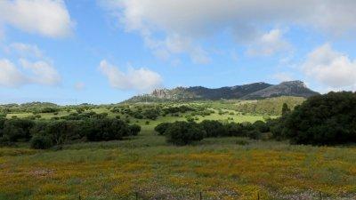 La campagne entre Cadix et Gibraltar