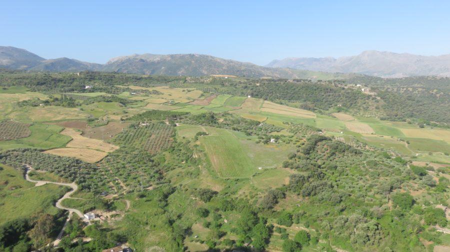 Vue sur la campagne depuis Ronda