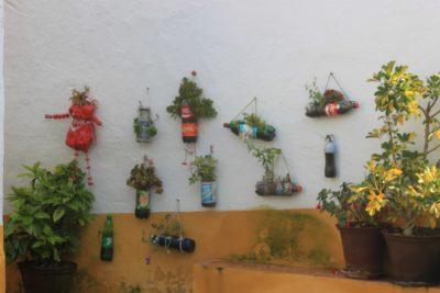Dans les ruelles d'Elvas - pots de fleurs singuliers