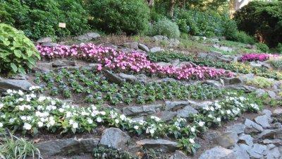 Les jardins de la villa Carlotta