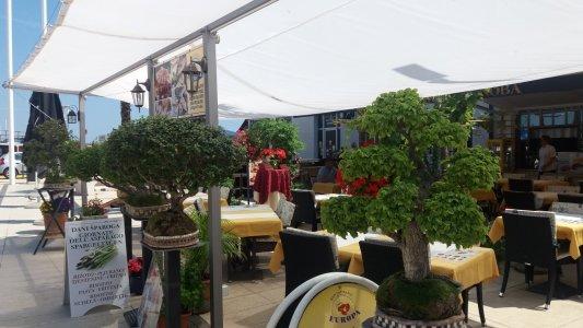 Restaurants sur le port d'Umag