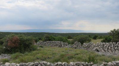 Les murs de pierre le long de la route vers Merag, l'embarcadère pour l'île de Krk (Croatie)