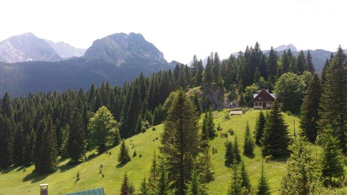 Vue depuis le camp Mlinsky Potok - Parc du Durmitor (Monténégro)