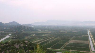 Des vignobles partout dans la plaine près de Klek - Croatie