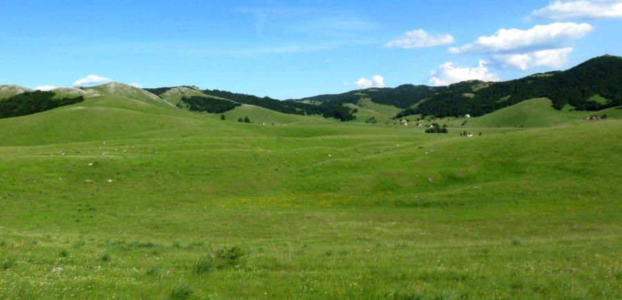 Sur le plateau du parc de Durmitor - Monténégro