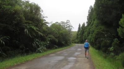 Départ de la randonnée du Trou de Fer (Réunion)