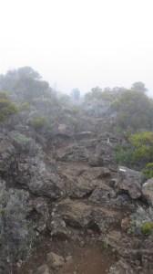 Le sentier du Morne Langevin