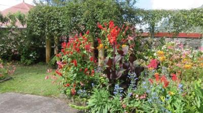 Fleurs tropicales à Hell-Bourg