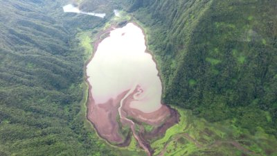 Le Grand Etang - Réunion