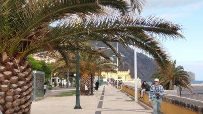 Le bord de mer de Funchal - Madère