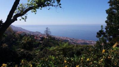 Vue sur Funchal depuis le jardin tropical de Monte Palace (Funchal - Madère)
