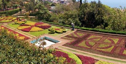 Parterre de fleurs du jardin botanique de Funchal - Madère
