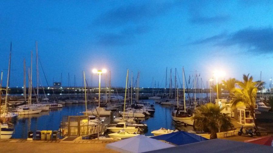 Le port de Funchal by night
