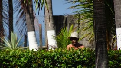"""Le """"Ticos"""" jardinier costaricain de la propriété - El Roble (Costa Rica)"""