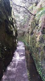 Randonnée dans la Levada aux 25 sources - Rabacal (Madère)
