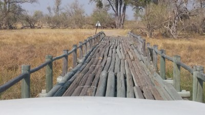 The fourth Bridge - Réserve de Moremi (Botswana)