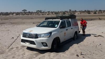 Ensablement dans la Rivière Boteti - Makgadikgadi NP (Botswana)
