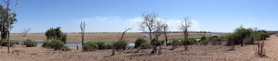 Panorama sur la rivière du parc national de Chobe - Botswana
