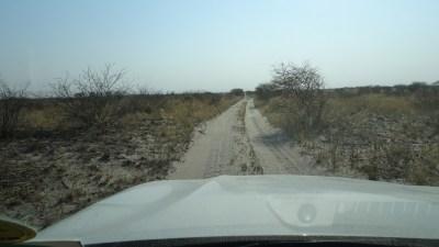 Sur la piste vers Baines Baobab - Nxai Pan NP (Botswana)