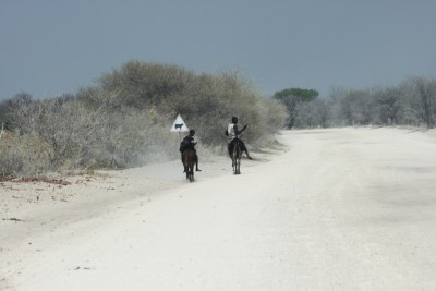 Gravel road entre South Gate et Shorobe - Botswana