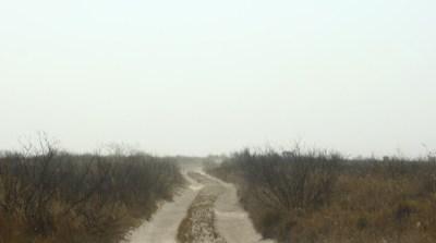 Piste enfumée - Nxai Pan (Botswana)