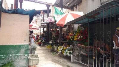 Marché de fleurs - La Havane (Cuba)
