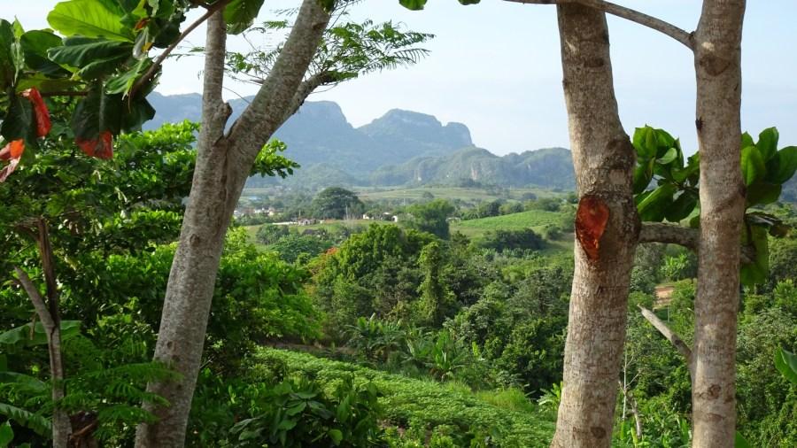 Vue sur la vallée de Vinales depuis l'hôtel La Ermita - Vinales (Cuba)