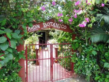 Le jardin botanique de Vinales - Cuba