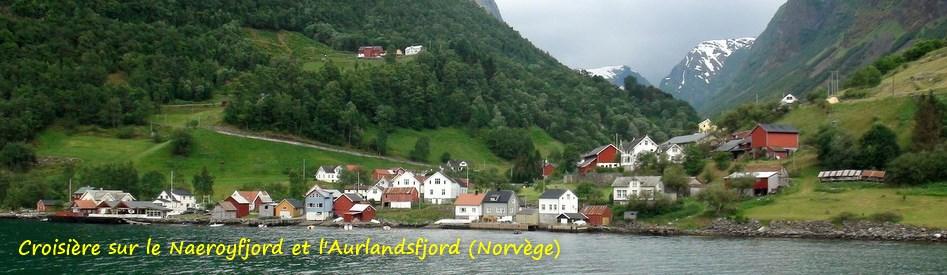 Croisière sur le Naeroyfjord et l' Aurlandsfjord (Norvège)