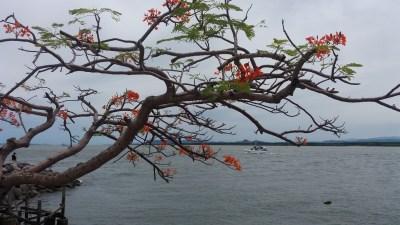 Le Pacifique à Puntarenas - Costa Rica