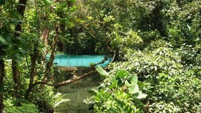 Le Rio Celeste aux eaux turquoises - parc du volcan Tenorio (Costa Rica)
